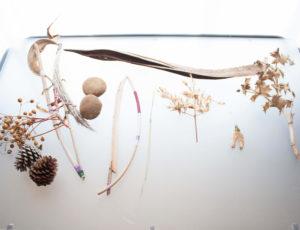 objets sonores caroline wehbe performance muique plantes art