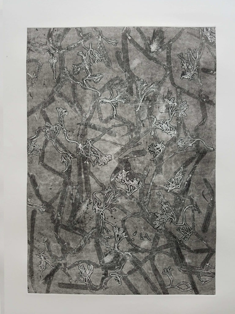 alguier géant caroline wehbe art gravure monotype plants print 2017