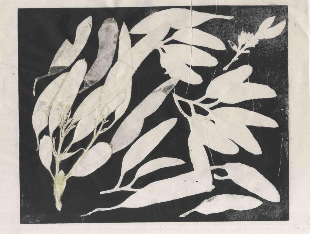 feuilles noires caroline wehbe art monotype plants